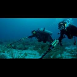 plongé sous-marine avec Excalibur II